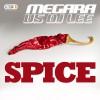 MEGARA VS DJ LEE – Spice